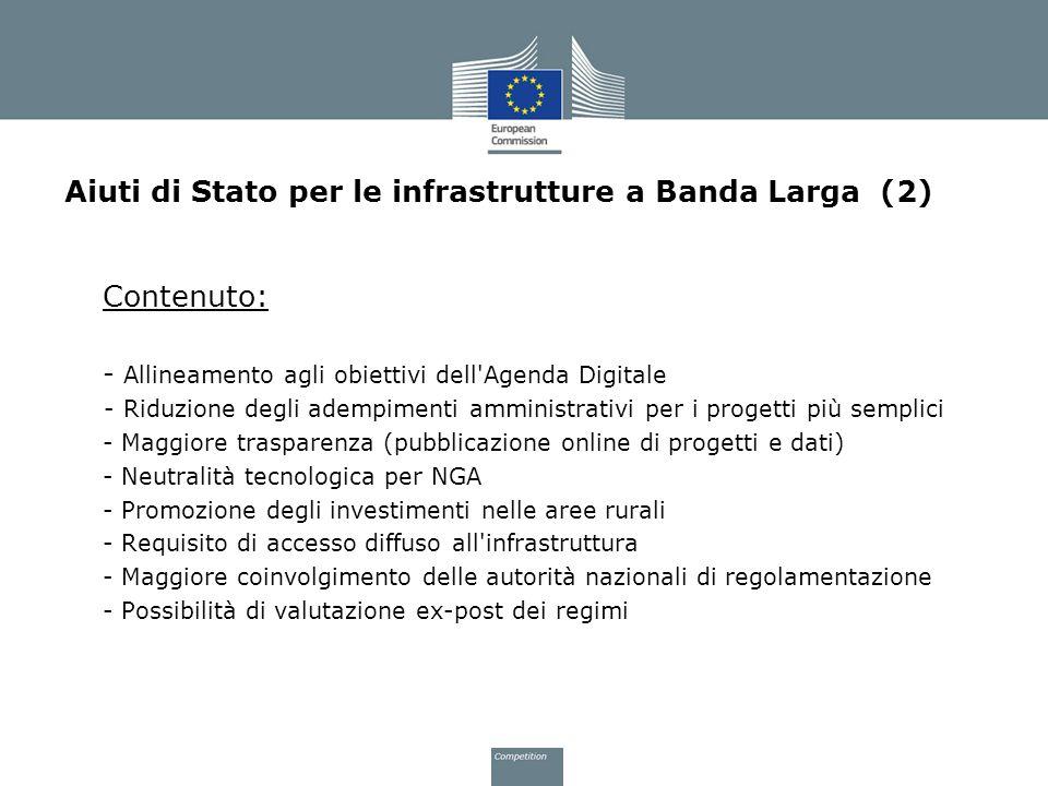 Aiuti di Stato per le infrastrutture a Banda Larga (2)