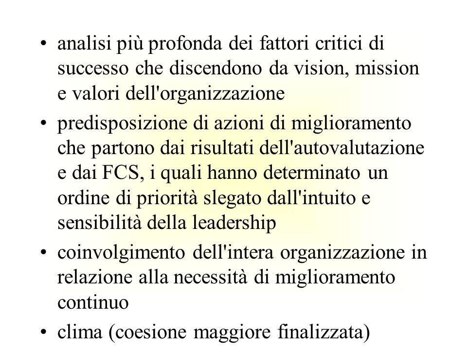 analisi più profonda dei fattori critici di successo che discendono da vision, mission e valori dell organizzazione