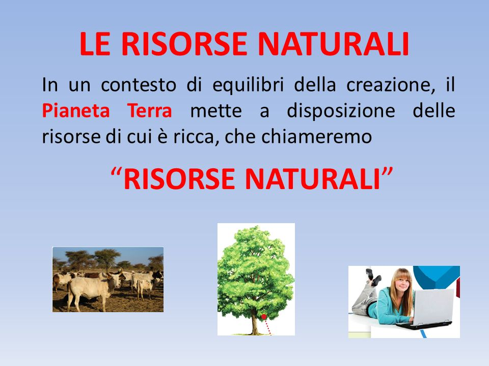 LE RISORSE NATURALI RISORSE NATURALI