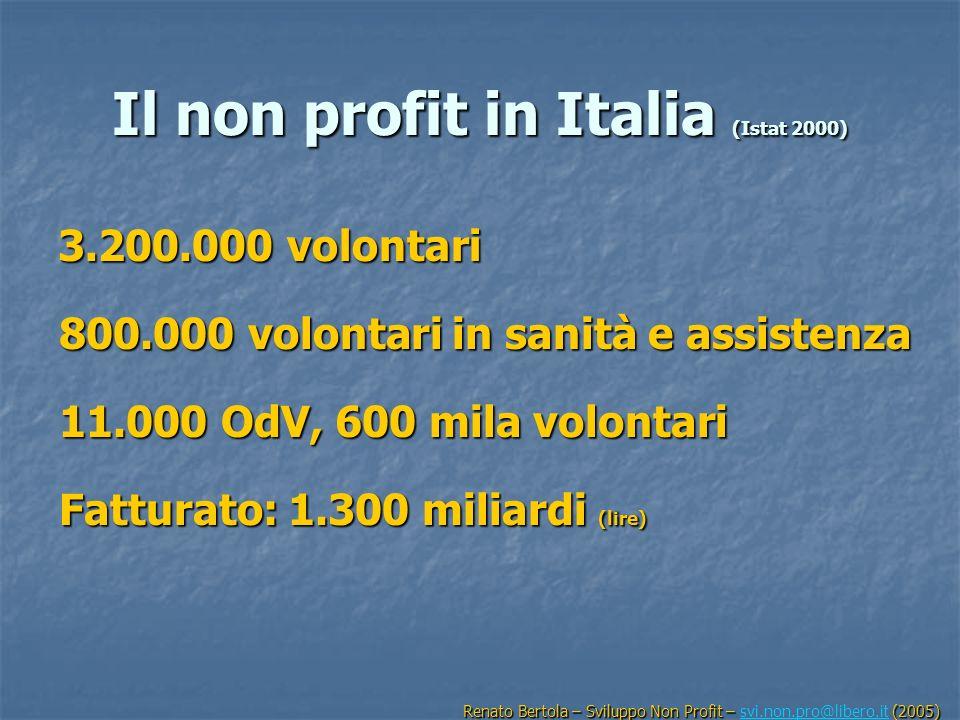 Il non profit in Italia (Istat 2000)