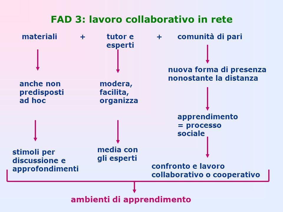 FAD 3: lavoro collaborativo in rete