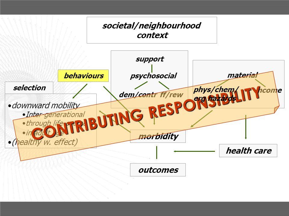 societal/neighbourhood CONTRIBUTING RESPONSIBILITY