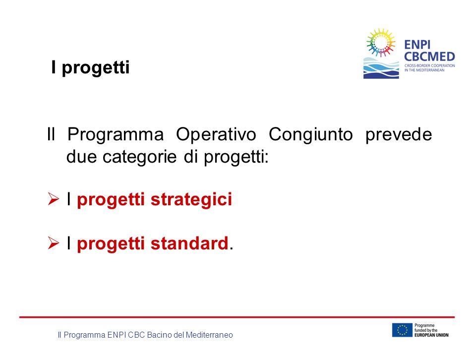I progetti Il Programma Operativo Congiunto prevede due categorie di progetti: I progetti strategici.