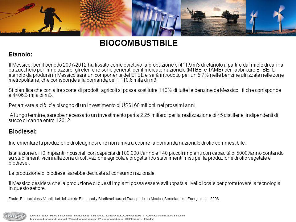 BIOCOMBUSTIBILE Etanolo: Biodiesel: