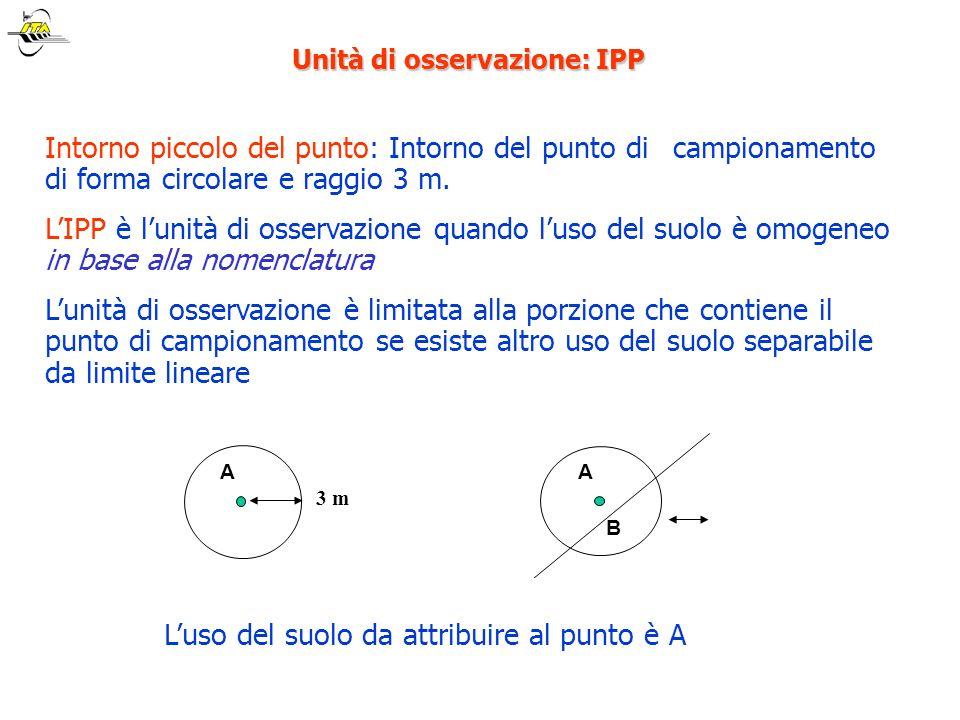 Unità di osservazione: IPP