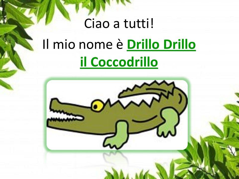 Ciao a tutti! Il mio nome è Drillo Drillo il Coccodrillo
