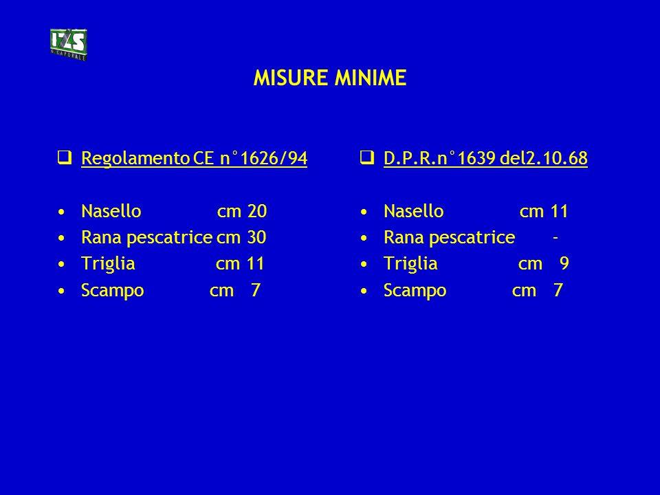 MISURE MINIME Regolamento CE n°1626/94 Nasello cm 20