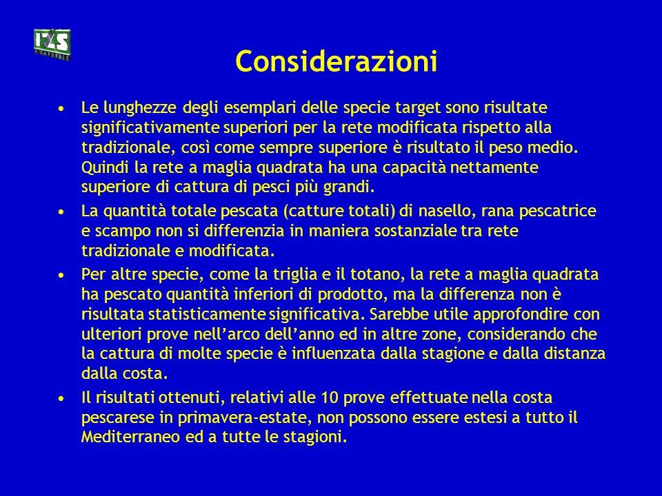 Considerazioni
