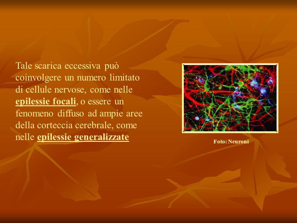 Tale scarica eccessiva può coinvolgere un numero limitato di cellule nervose, come nelle epilessie focali, o essere un fenomeno diffuso ad ampie aree della corteccia cerebrale, come nelle epilessie generalizzate