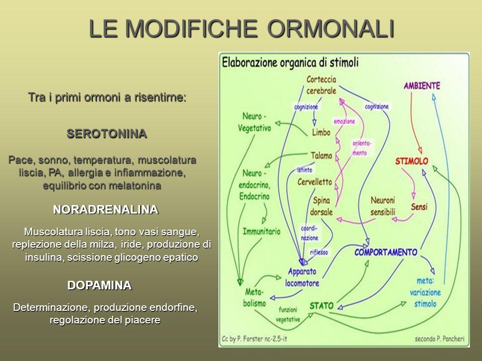 LE MODIFICHE ORMONALI Tra i primi ormoni a risentirne: SEROTONINA
