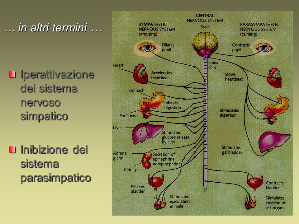 … in altri termini … Iperattivazione del sistema nervoso simpatico.