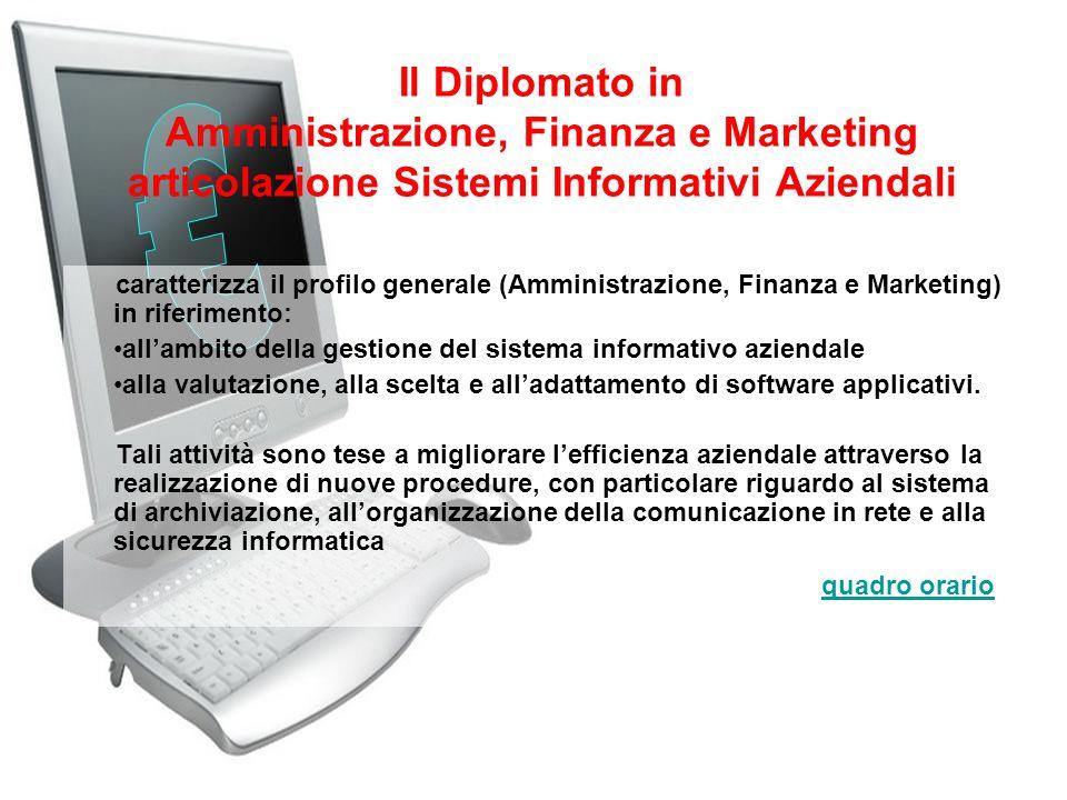 Il Diplomato in Amministrazione, Finanza e Marketing articolazione Sistemi Informativi Aziendali
