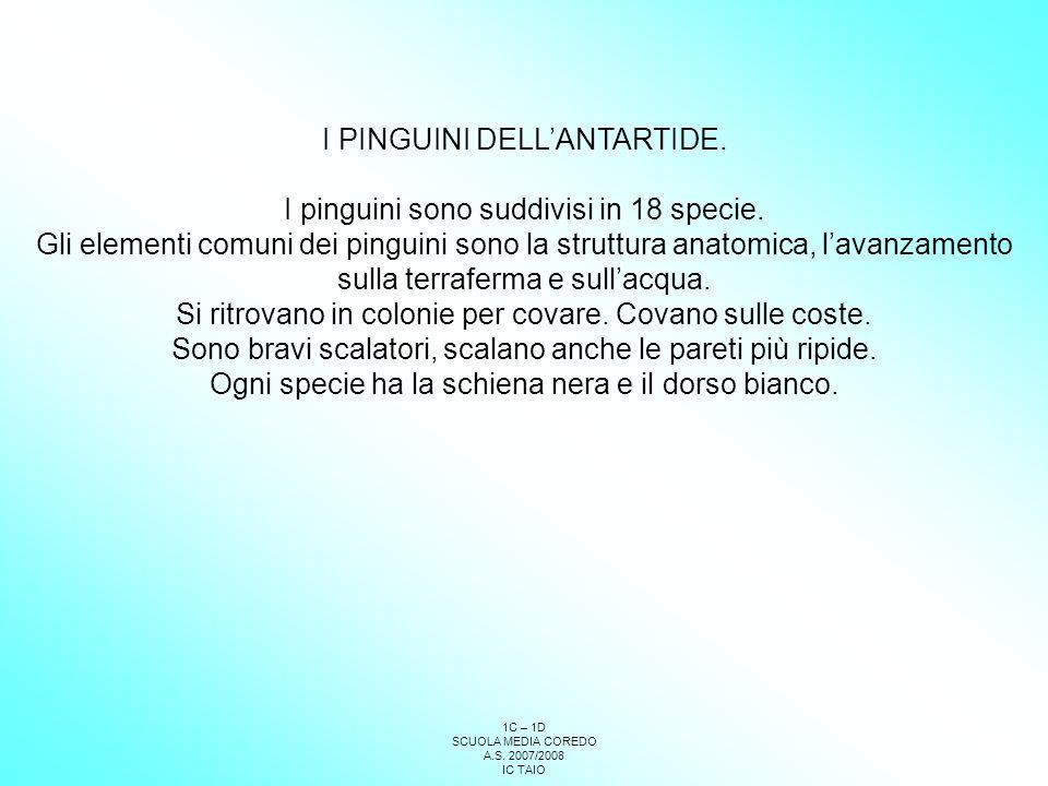 I PINGUINI DELL'ANTARTIDE. I pinguini sono suddivisi in 18 specie.