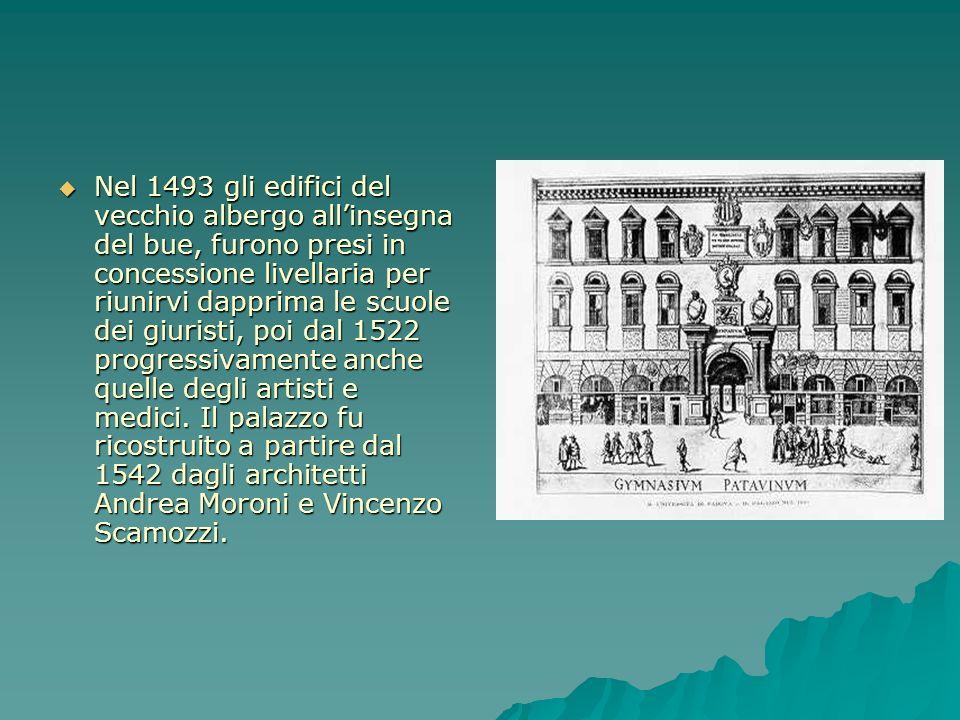 Nel 1493 gli edifici del vecchio albergo all'insegna del bue, furono presi in concessione livellaria per riunirvi dapprima le scuole dei giuristi, poi dal 1522 progressivamente anche quelle degli artisti e medici.