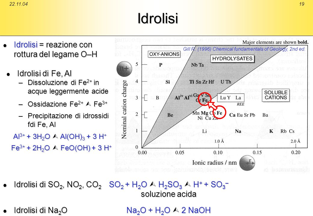 Idrolisi Idrolisi = reazione con rottura del legame O–H