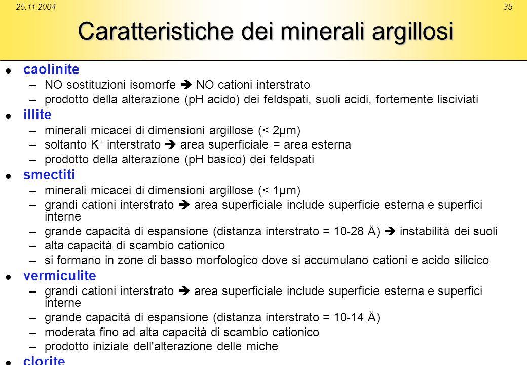 Caratteristiche dei minerali argillosi