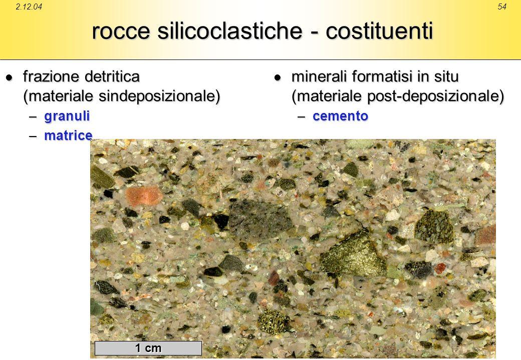 rocce silicoclastiche - costituenti