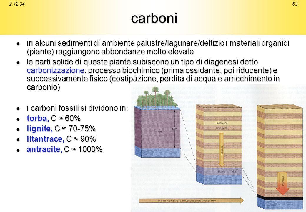 2.12.04 carboni. in alcuni sedimenti di ambiente palustre/lagunare/deltizio i materiali organici (piante) raggiungono abbondanze molto elevate.