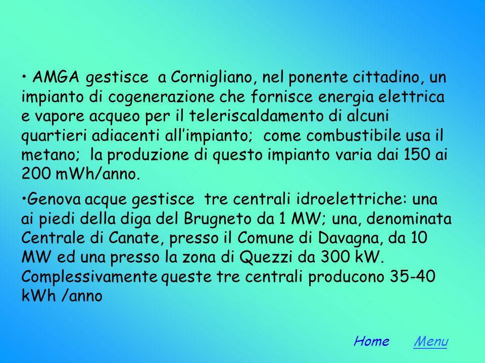 AMGA gestisce a Cornigliano, nel ponente cittadino, un impianto di cogenerazione che fornisce energia elettrica e vapore acqueo per il teleriscaldamento di alcuni quartieri adiacenti all'impianto; come combustibile usa il metano; la produzione di questo impianto varia dai 150 ai 200 mWh/anno.