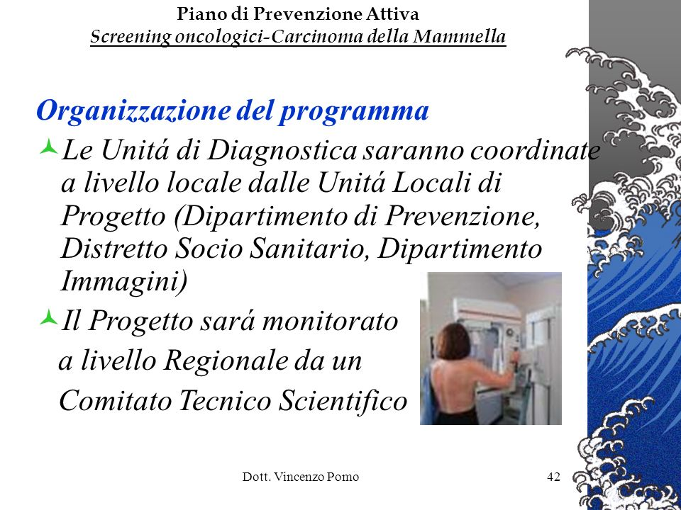 Organizzazione del programma