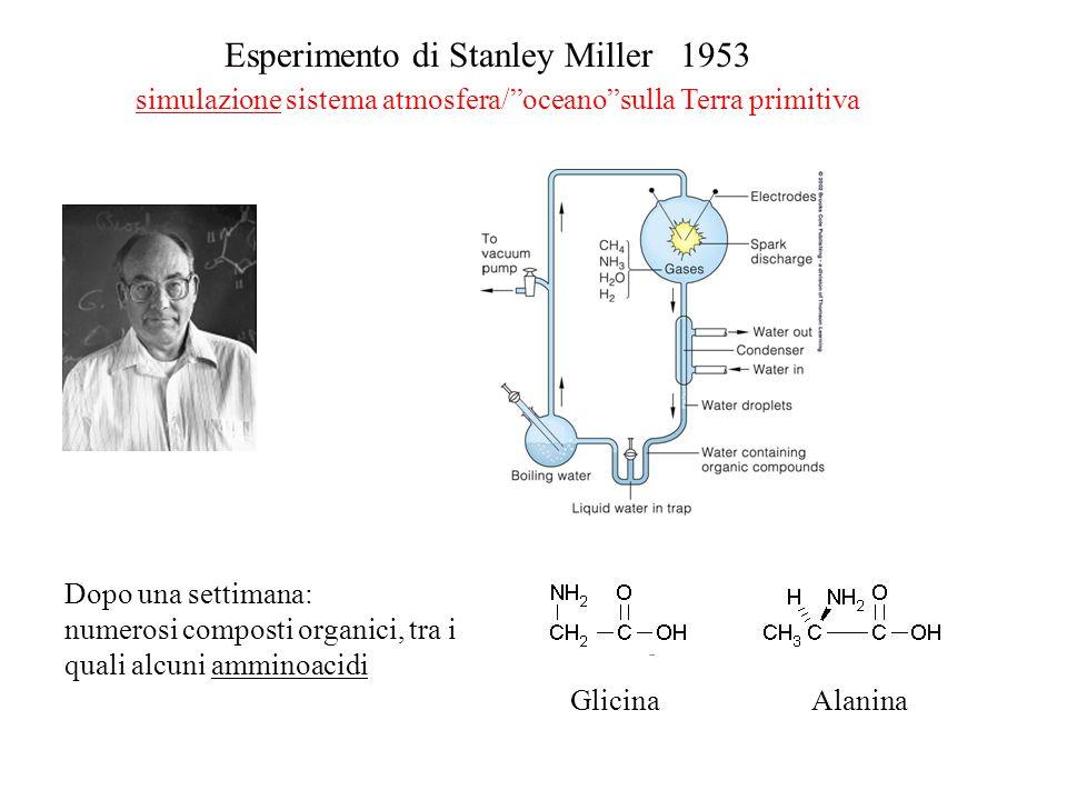Esperimento di Stanley Miller 1953 simulazione sistema atmosfera/ oceano sulla Terra primitiva