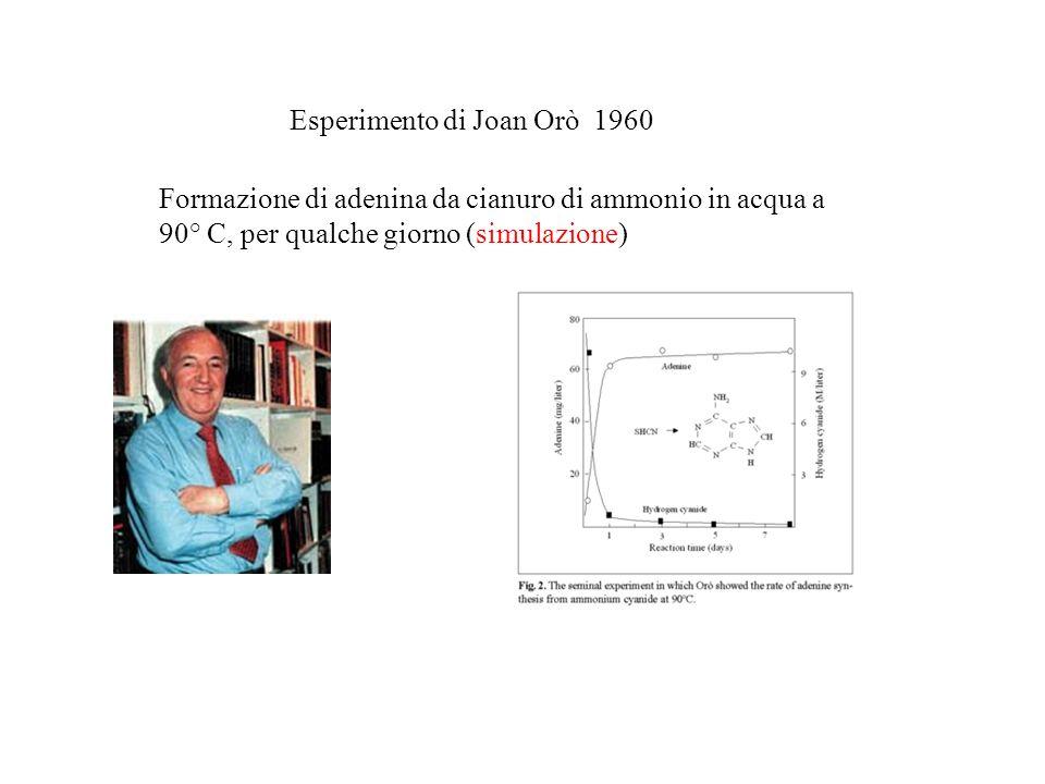 Esperimento di Joan Orò 1960