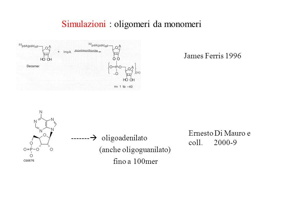 Simulazioni : oligomeri da monomeri