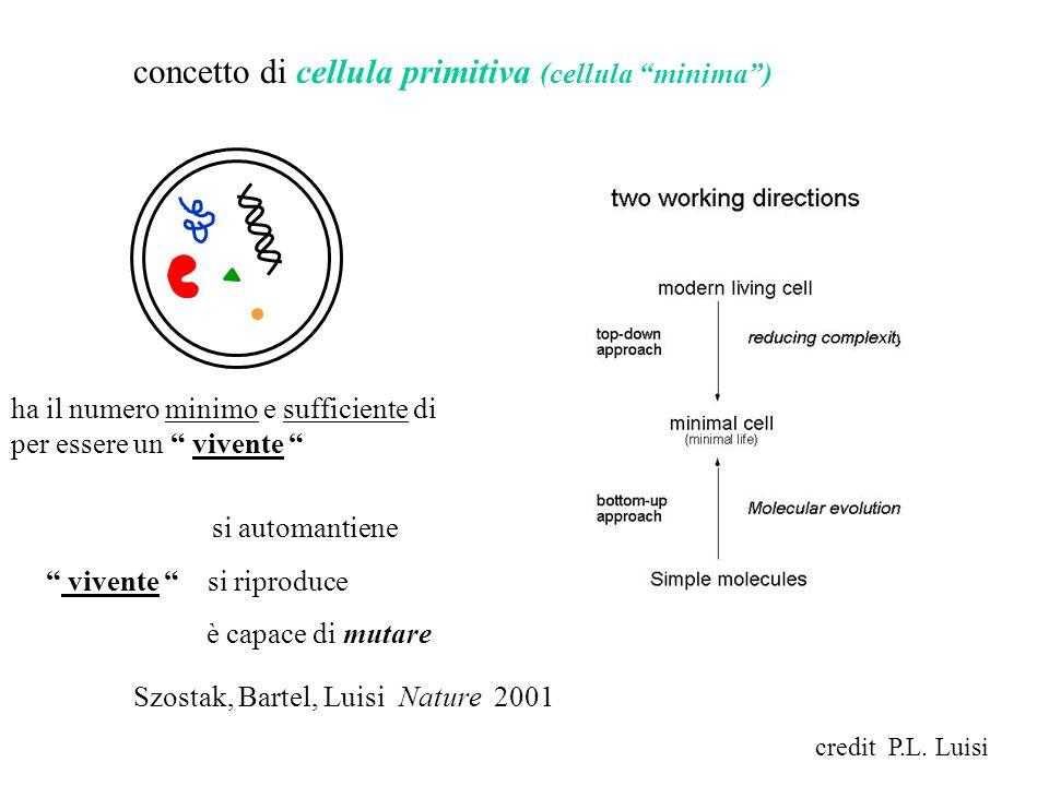 concetto di cellula primitiva (cellula minima )