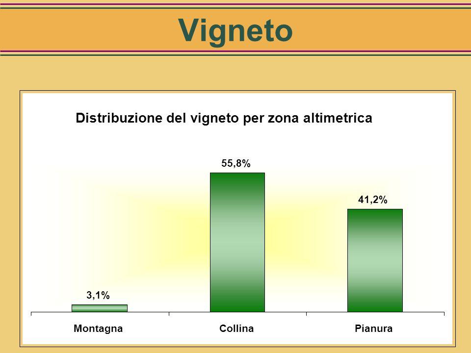 Vigneto Distribuzione del vigneto per zona altimetrica 3,1% 55,8%