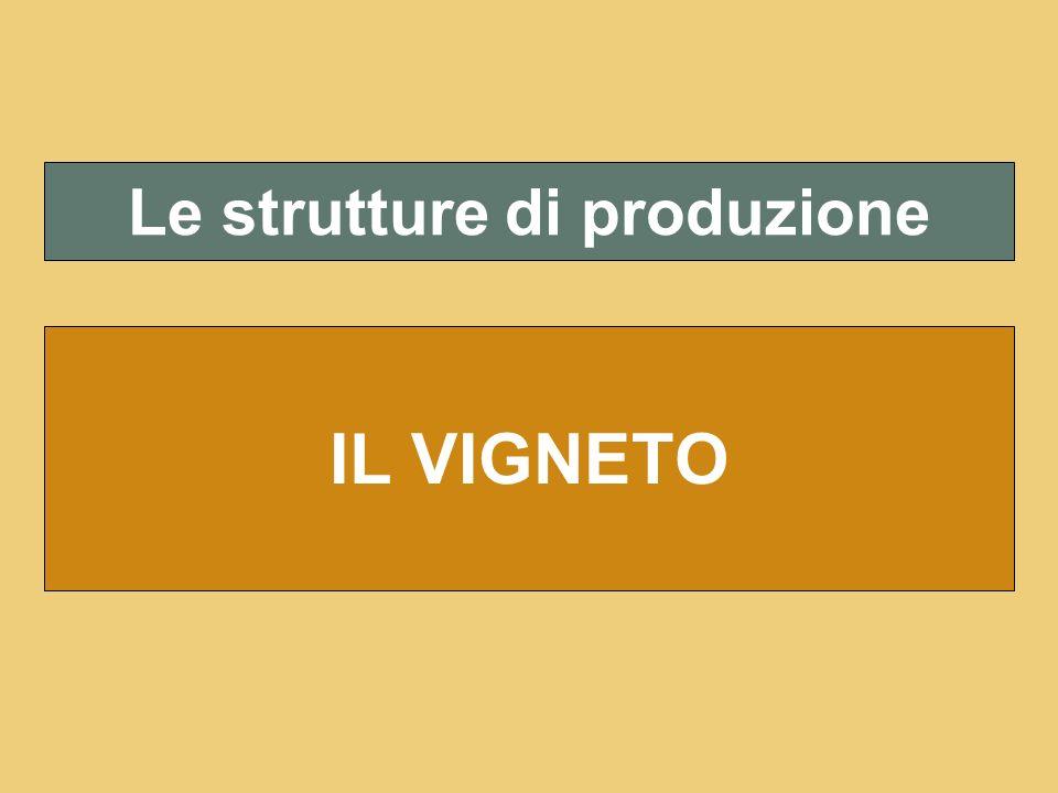 Le strutture di produzione