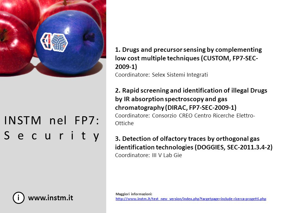 INSTM nel FP7: Security i www.instm.it