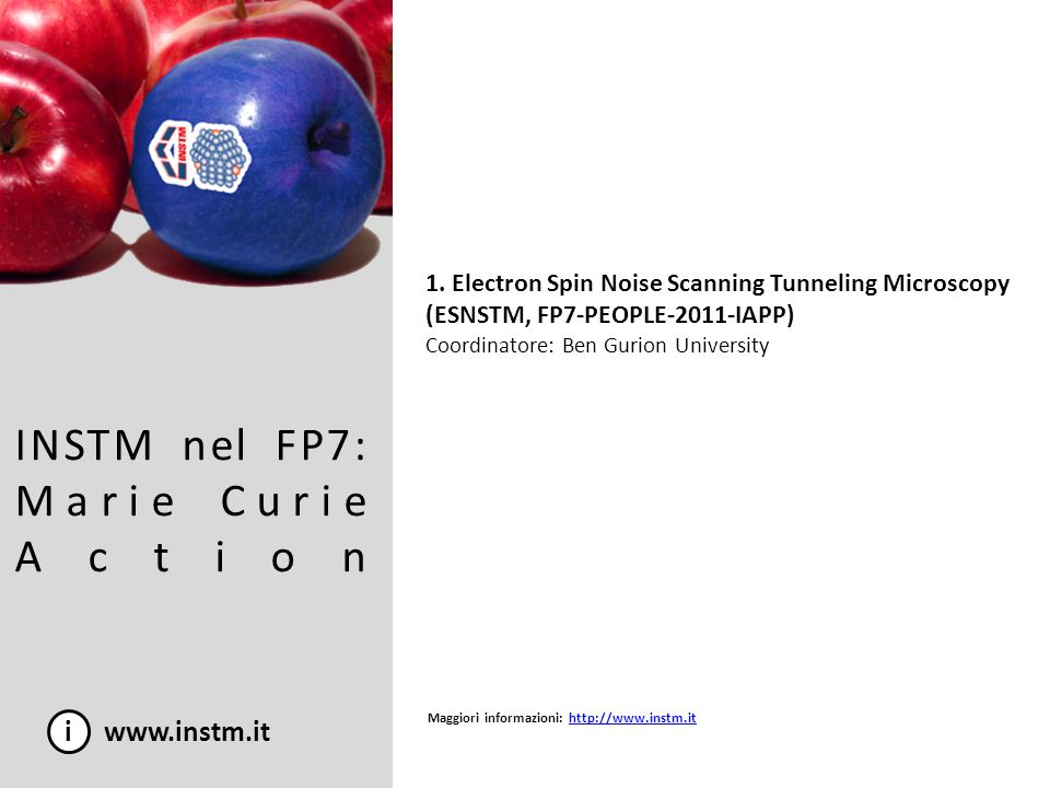 INSTM nel FP7: Marie Curie Action