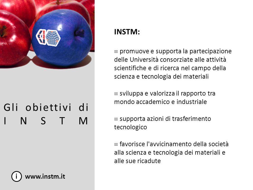 Gli obiettivi di INSTM INSTM: