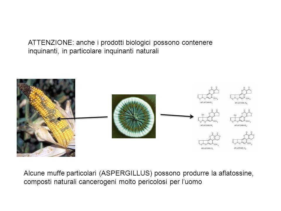 ATTENZIONE: anche i prodotti biologici possono contenere inquinanti, in particolare inquinanti naturali