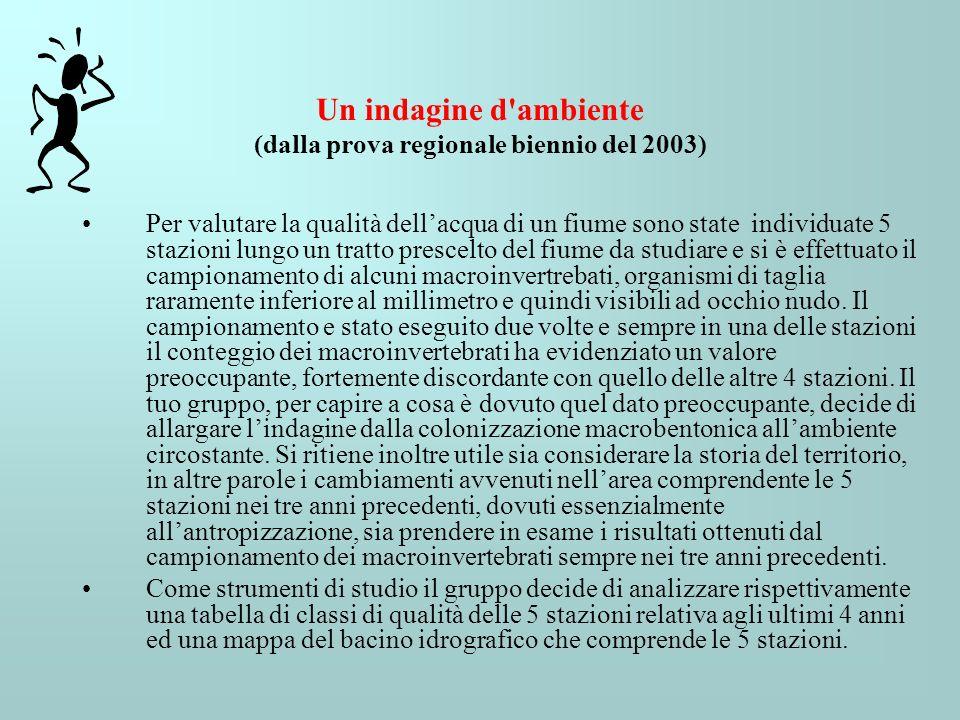 Un indagine d ambiente (dalla prova regionale biennio del 2003)