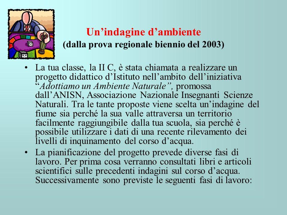 Un'indagine d'ambiente (dalla prova regionale biennio del 2003)