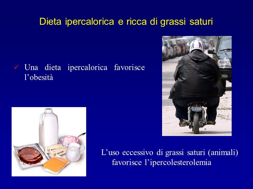 Dieta ipercalorica e ricca di grassi saturi