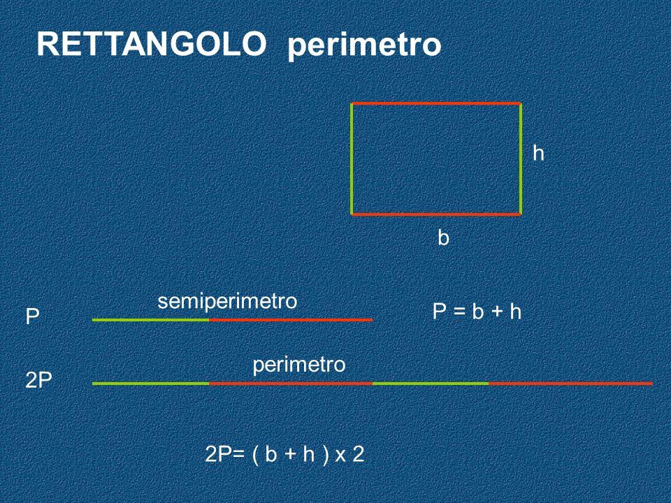 RETTANGOLO perimetro h b semiperimetro P = b + h P perimetro 2P