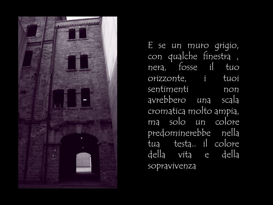 E se un muro grigio, con qualche finestra , nera, fosse il tuo orizzonte, i tuoi sentimenti non avrebbero una scala cromatica molto ampia, ma solo un colore predominerebbe nella tua testa..