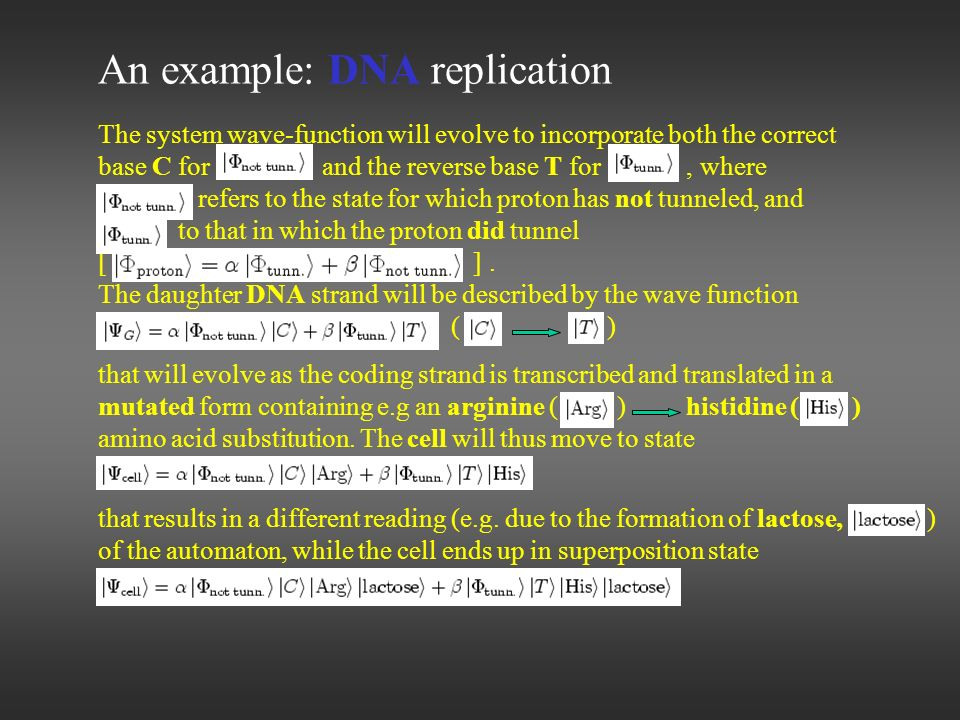 An example: DNA replication