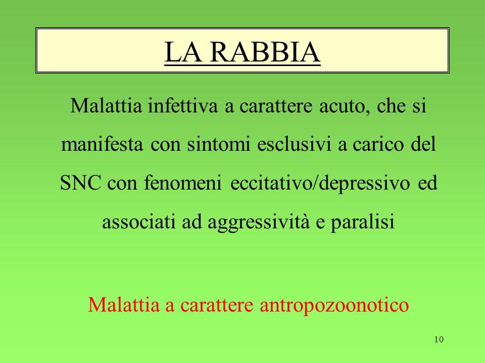 Malattia a carattere antropozoonotico