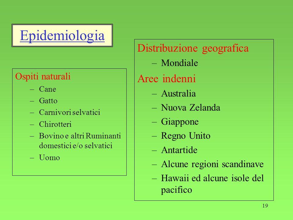 Epidemiologia Distribuzione geografica Aree indenni Mondiale Australia