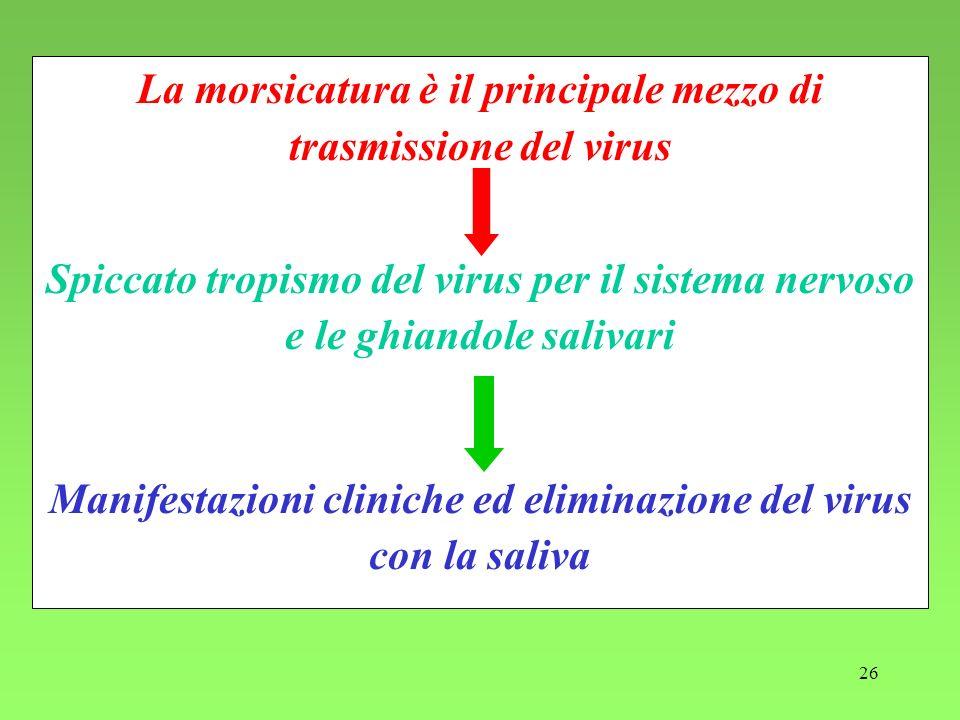 Manifestazioni cliniche ed eliminazione del virus con la saliva