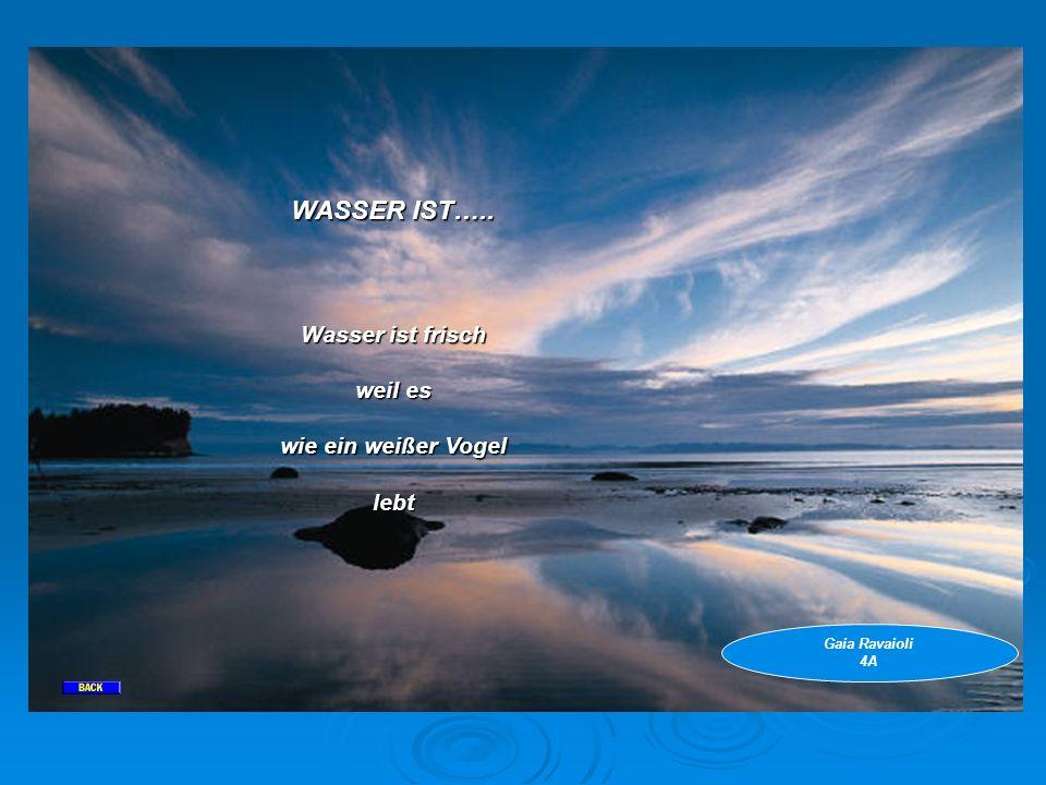 WASSER IST….. Wasser ist frisch weil es wie ein weißer Vogel lebt