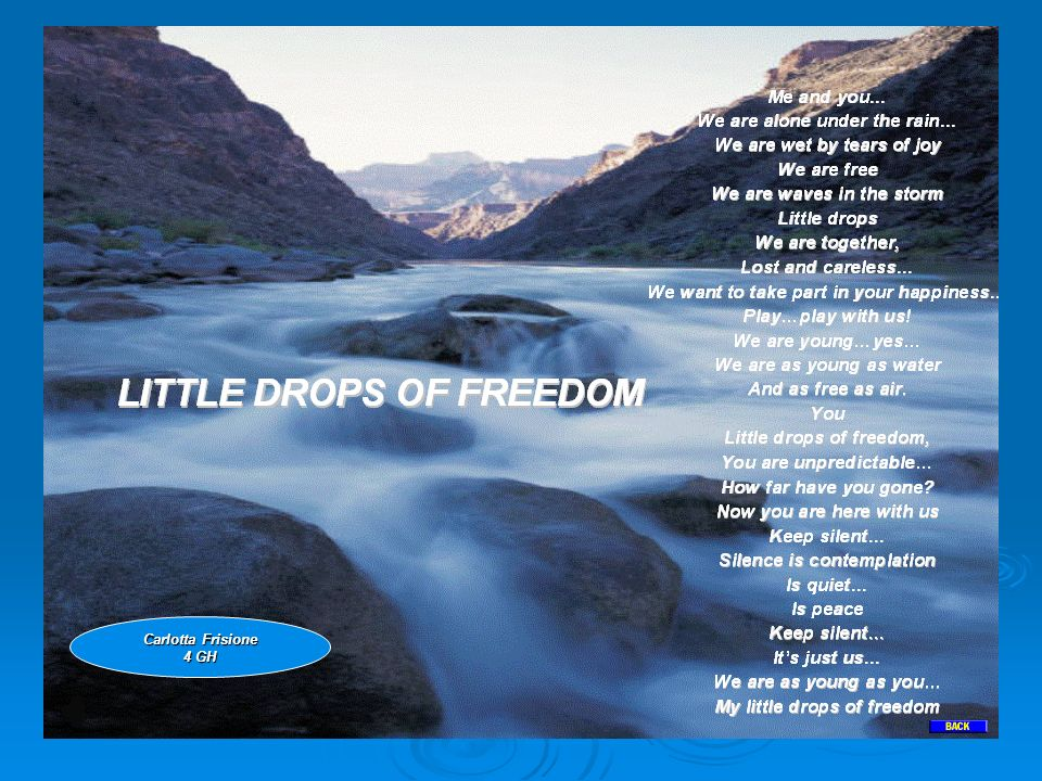 LITTLE DROPS OF FREEDOM