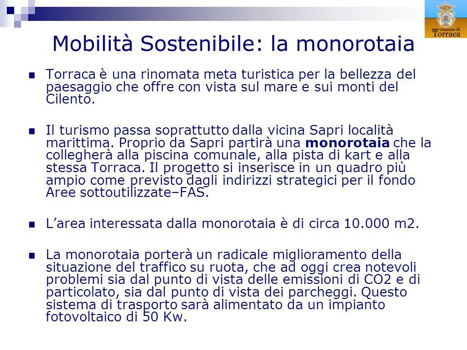 Mobilità Sostenibile: la monorotaia
