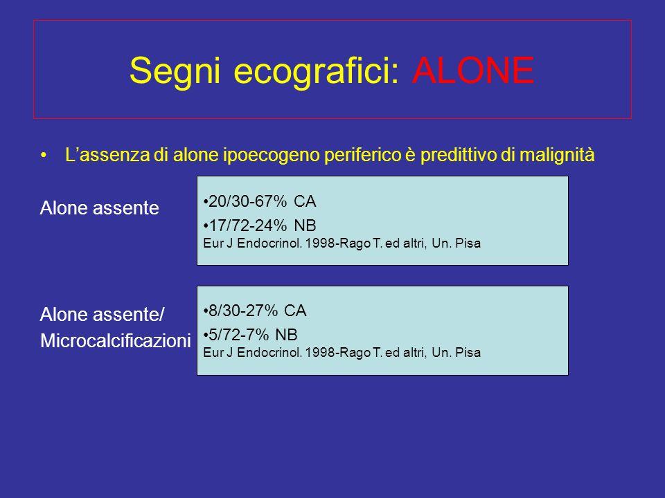 Segni ecografici: ALONE