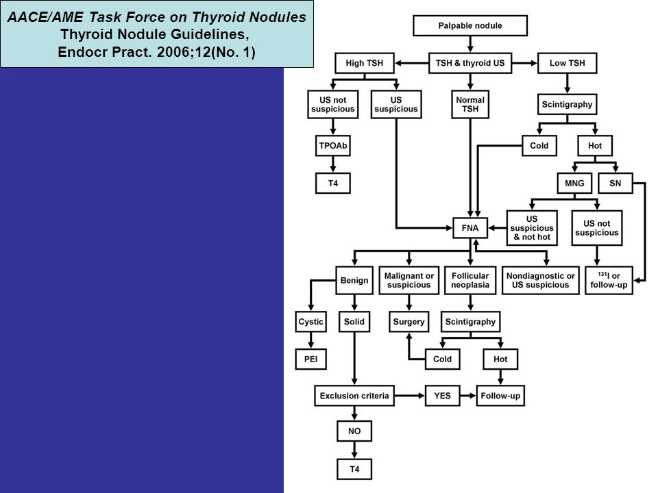 AACE/AME Task Force on Thyroid Nodules Thyroid Nodule Guidelines,