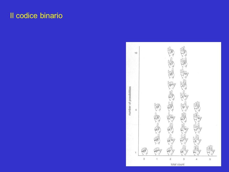 Il codice binario