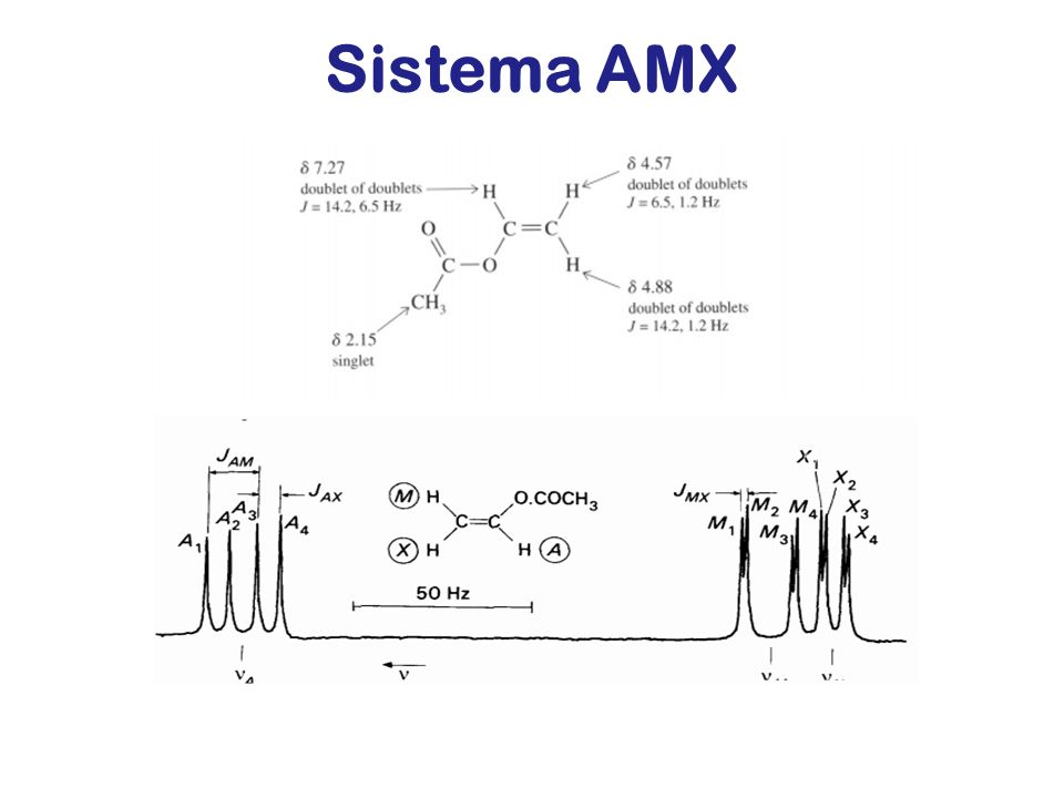 Sistema AMX ACETATO DI VINILE
